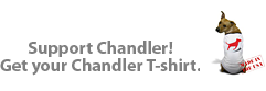 The Chandler Project Store
